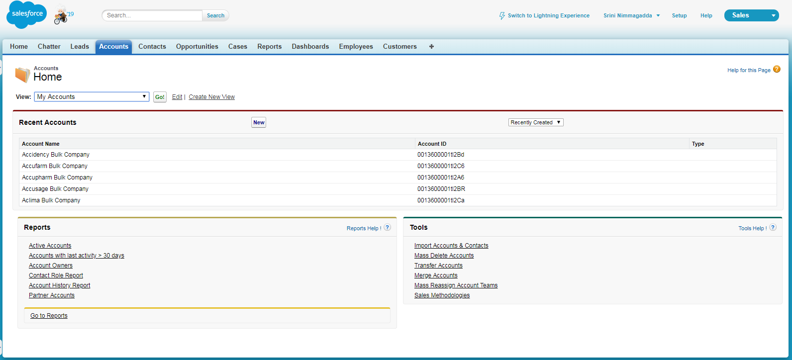 Account Custom VisualForce Page