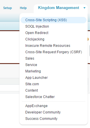Cannot see Cross-site Scripting (XSS) application
