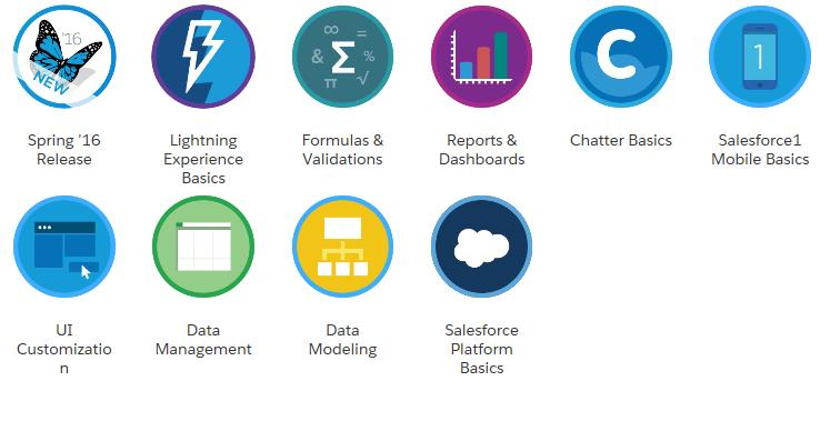 Salesforce Badges Earned