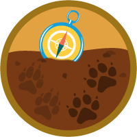 Competitor Tracking in Salesforce icon