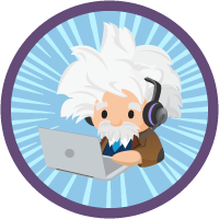 Einstein for Service: Quick Look icon