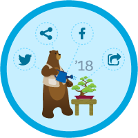 Marketing Cloud Social Specialist Certification Maintenance (Spring '18) icon
