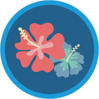 Salesforce の Ohana 文化