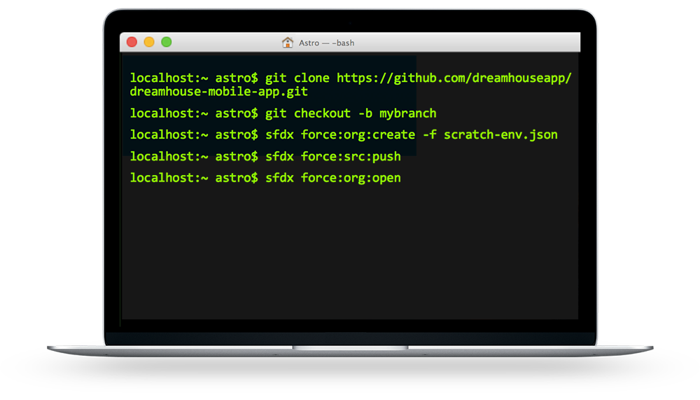 Salesforce DX command line interface