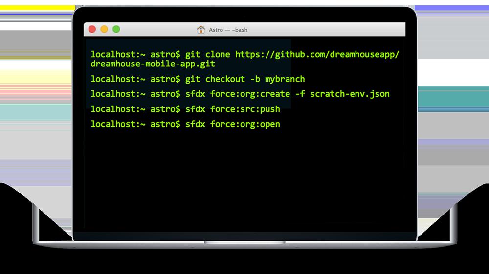 Salesforce DX command line interface